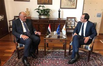 وزير الخارجية يعقد جلسة مباحثات مع نظيره القبرصي صور