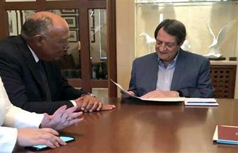 وزير الخارجية يسلم رسالة من الرئيس السيسي إلى نظيره القبرصي