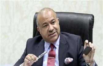 عشماوي: مصر عرفت السجل التجاري منذ عام 1935 ولديها 95 مكتبا بالمحافظات