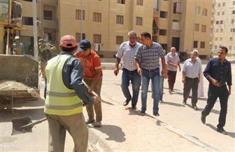 رئيس جهاز تنمية مدينة بدر يقوم بجولة تفقدية بالحي الثاني ومنطقة إسكان المحافظة