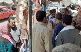 محافظة أسيوط: حملات تموينية مكثفة على محلات الجزارة والأسواق بالقرى  صور