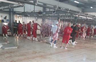 أطباء البعثة المصرية يشاركون في فحص لحوم الأضاحي بالسعودية| صور