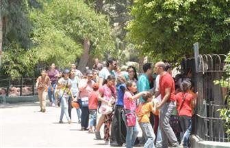 حديقة الحيوان تستقبل 40 ألف زائر في أول أيام عيد الأضحى المبارك| صور