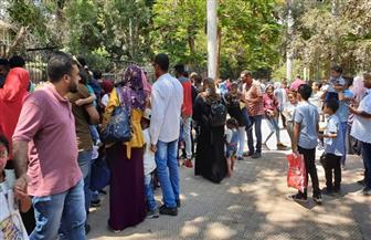 50 ألف زائر لحديقة الحيوان في ثاني أيام عيد الأضحى.. والأطفال دون الخامسة مجانا   صور