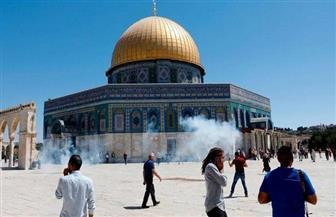 """""""ماعت"""": ينبغي تشكيل لجنة دولية للتحقيق في الاعتداءات المستمرة بحق المسجد الأقصى"""