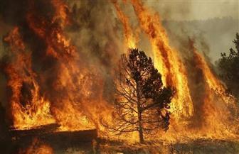 رجال الإطفاء يكافحون لاحتواء حريق كبير في قبرص