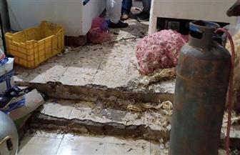 ضبط وإعدام 307 كيلو جرامات من اللحوم الفاسدة بمطروح |صور