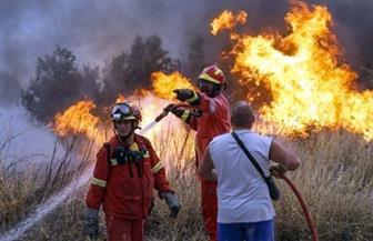 فرق الإطفاء تسيطر جزئيا على حرائق غابات بجزيرة وابية اليونانية