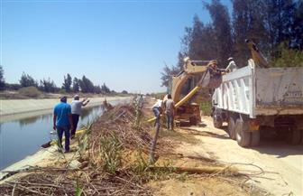 محافظ مطروح: إزالة 146 حالة تعدعلى مياه ترعة الحمام خلال أيام عيد الأضحى  صور