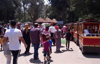 265 ألف زائر لحديقة الحيوان خلال أيام عيد الأضحى المبارك  صور
