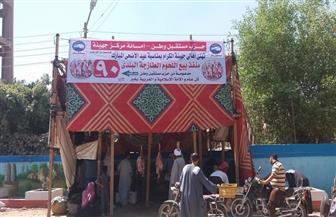 مستقبل وطن سوهاج: ذبح وبيع 25 عجلا فى 3 مراكز بسعر 90 جنيها للكيلو| صور