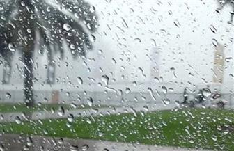 أمطار متوسطة على مراكز البحيرة