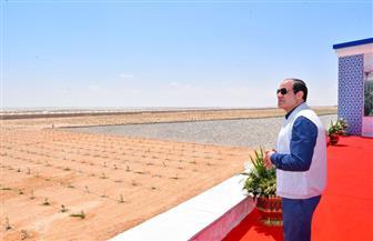 أمين عام الفلاحين:  القطاع الزراعي شهد طفرة حقيقية في عهد الرئيس السيسي