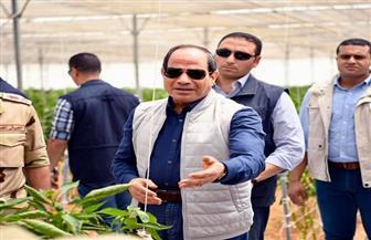 تعرف على أماكن بيع منتجات الصوب الزراعية التي افتتحها الرئيس السيسي اليوم