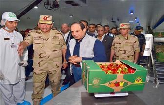 الرئيس السيسي يتفقد مصنع الفرز والتعبئة لمنتجات مشروع الصوب الزراعية