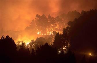 حرائق الغابات تحول جزر الكناري من جنة سياحية إلى جحيم فوق الأرض | صور