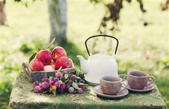 دراسة: الشاي والتفاح يحميان من السرطان وأمراض القلب