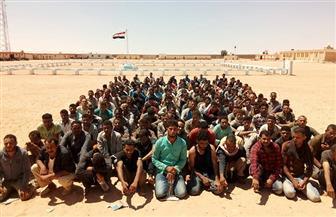 حرس الحدود يضبط 18 قنبلة و20 دانة و4 آلاف كيلو حشيش وبانجو في شمال سيناء