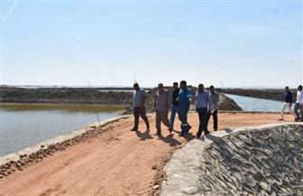 محافظ الفيوم: استمرار أعمال تطهير وتنمية بحيرة قارون | صور