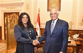 رئيس مجلس النواب يستقبل رئيسة برلمان توجو | صور