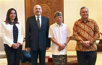 السفير المصري ومحافظة دمياط يلتقيان مع محافظ جزيرة بالي الإندونيسية