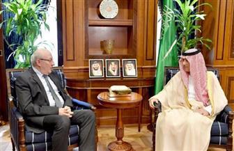 الجبير يستقبل سفير مصر لدى السعودية