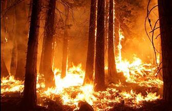 هل ستتأثر مصر بحرائق غابات الأمازون؟ خبير يحدد 6 ظواهر مناخية يشهدها المصريون من الخريف المقبل