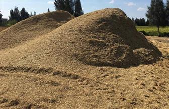 """""""البيئة"""" و""""الزراعة"""" يستعدان لموسم قش الأرز وتوجيه الأجهزة بعمل زيارات ميدانية"""