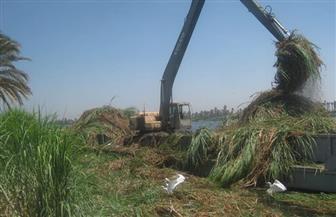 """""""الري"""" في أسبوع.. قطاع الموارد المائية ينفذ عملية تطهير ونزع للحشائش باستثمارات 11.5 مليون جنيه"""