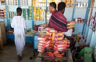 إعدام 178 كيلو أغذية و35 لتر عصائر لتغيرها في الخواص خلال حملة لصحة البحر الأحمر| صور