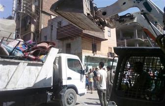 إزالة 200 حالة إشغال بشوارع كوم أمبو بأسوان | صور