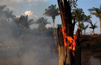 الجيش البرازيلي يدفع بطائرات حربية للسيطرة على حرائق غابات الأمازون| صور