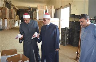 """""""الأوقاف"""": توزيع 10 أطنان لحوم أضاحي بمحافظات الشرقية والمنوفية وجنوب سيناء   صور"""