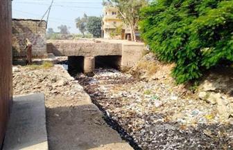 محافظ الشرقية: رفع 20 طنا من القمامة بترعة الهجارسة حفاظًا على البيئة | صور