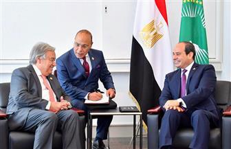 تعزيز التعاون الإفريقي مع الأمم المتحدة.. ننشر تفاصيل لقاء الرئيس السيسي وأنطونيو جوتيريش| صور