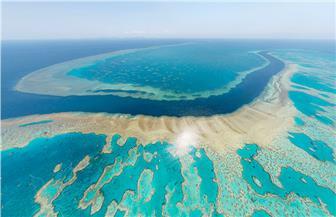 السلطات البحرية الأسترالية: الحيد المرجاني العظيم يواجه مستقبلا بائسا