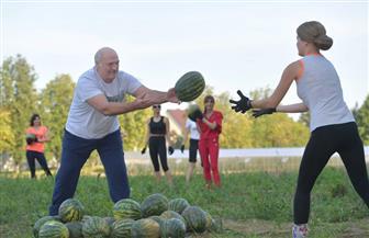 الرئيس البيلاروسي يشارك في موسم حصاد البطيخ| صور