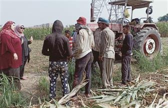 حملات توعية للمزارعين بالقليوبية استعدادا لموسم قش الأرز