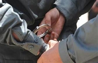 ضبط 243 هاربا من أحكام قضائية فى حملة بالقليوبية