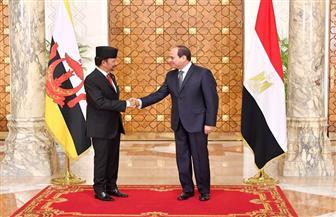 الرئيس السيسي يستقبل صباح اليوم سلطان بروناي بقصر الاتحادية