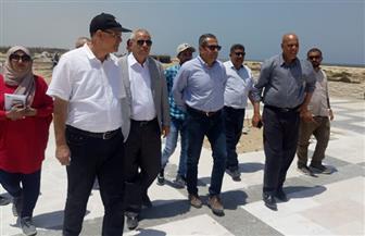 نائب وزير الإسكان يتفقد مشروعات مدينتي المنصورة ودمياط الجديدتين | صور