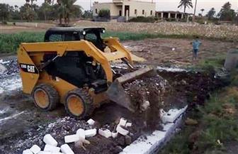 إزالة 19 حالة تعد على أراضي أملاك دولة وزراعية بالفيوم| صور