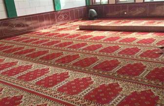 4500 متر سجاد لمساجد الوادي الجديد.. و13 مجزرا لاستقبال أضاحي العيد