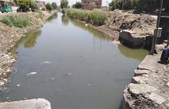 الحكومة: لا صحة لجفاف الترع والمصارف مما يُعرِّض مصر لكارثة زراعية