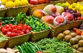 نائب رئيس شعبة الخضر والفاكهة: انخفاض الأسعار 30% بالمقارنة بالعام الماضي