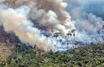 استمرار اشتعال غابات الأمازون فى البرازيل