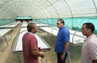 """رئيس جامعة سوهاج يتفقد مزرعتي الإنتاج الحيواني والنباتي ويتابع """"الصوب""""   صور"""