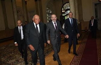 فلسطين وسوريا وليبيا واليمن على رأس قائمة مباحثات وزيري خارجية مصر والأردن