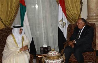 سامح شكري يستقبل وزير الخارجية الإماراتي.. ويؤكدان الحرص على تعزيز العلاقات