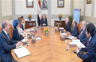تفاصيل اجتماع الرئيس السيسي بشأن تفعيل منظومة إدارة المخلفات الصلبة وبرنامج تنمية الصعيد| فيديو